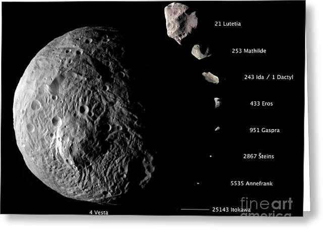 Stein Greeting Cards - Asteroid Size Comparison With Vesta Greeting Card by NASA/Science Source