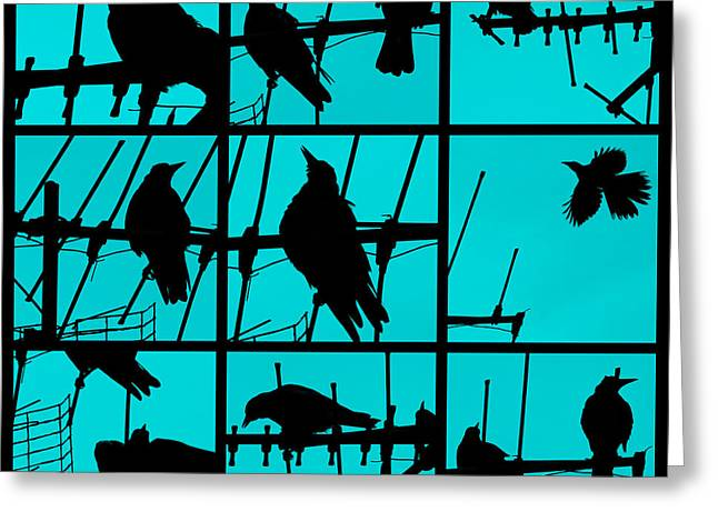 Bird Collage Greeting Cards - Asylum Greeting Card by Andrew Paranavitana
