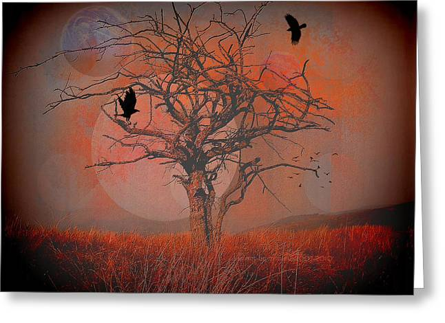Subconscious Greeting Cards - at Dusk Greeting Card by Mimulux patricia no