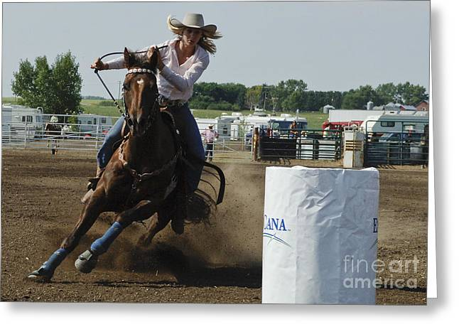 Bucking Horses Greeting Cards - At Full Speed Greeting Card by Bob Christopher