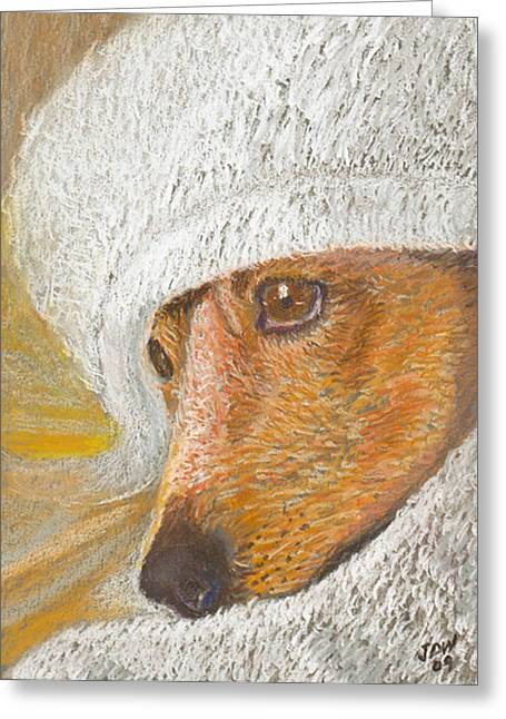 Concentration Pastels Greeting Cards - At Peace Greeting Card by  David Willingham