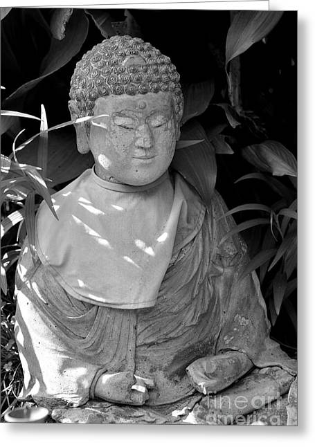 Kamakura Greeting Cards - At Peace Greeting Card by Dean Harte