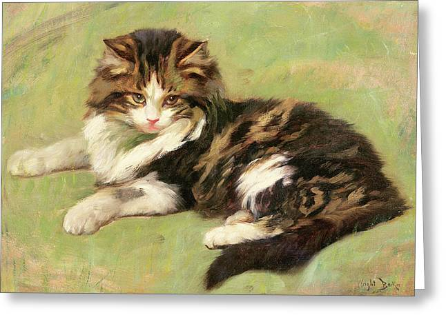 Wright Barker Greeting Cards - At Rest Greeting Card by Wright Barker