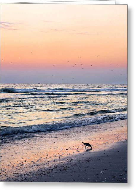 St Petersburg Florida Greeting Cards - At Sunset Greeting Card by Angela Rath