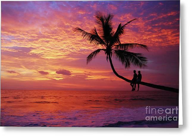 Amazing Sunset Greeting Cards - Atardecer en la palmera Playa Blanca Greeting Card by Cesar Marino