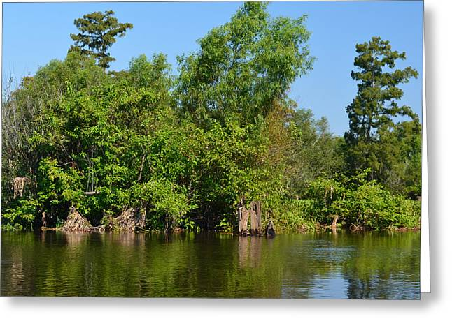 Atchafalaya Basin 46 Greeting Card by Maggy Marsh