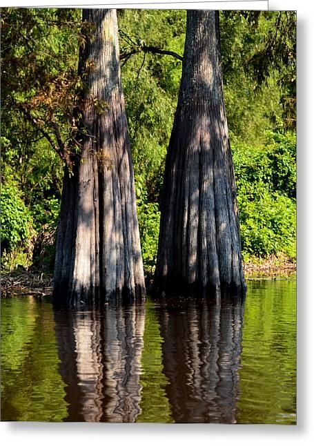 River Flooding Greeting Cards - Atchafalaya Basin 53 Greeting Card by Maggy Marsh