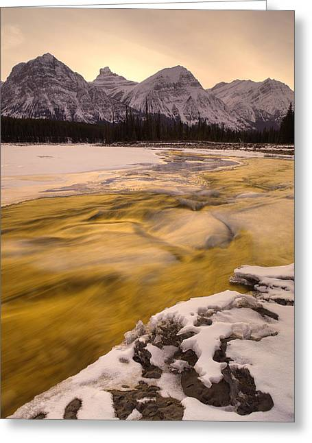 Athabasca River And Mt Fryatt, Jasper Greeting Card by Darwin Wiggett