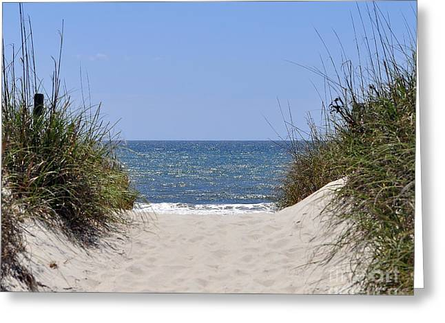 Atlantic Beaches Greeting Cards - Atlantic Access Greeting Card by Al Powell Photography USA