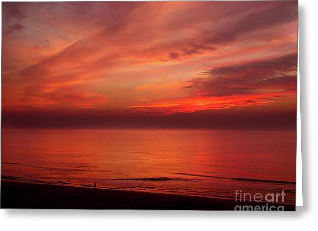 Emergence Greeting Cards - Atlantic Predawn Greeting Card by Crystal Garner