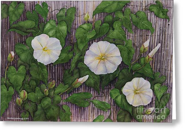 Flowers On A Fence Greeting Cards - Audrey III Greeting Card by Nancy Pahl