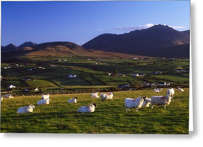 Aughrim Hill, Mourne Mountains, County Greeting Card by Gareth McCormack