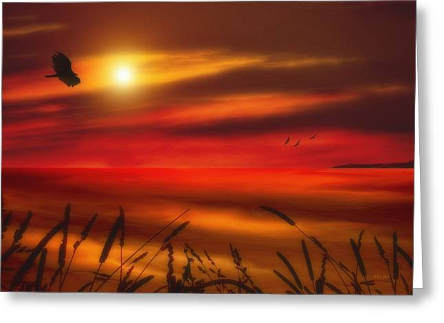 Sunset Posters Greeting Cards - August Sunset Greeting Card by Tom York Images