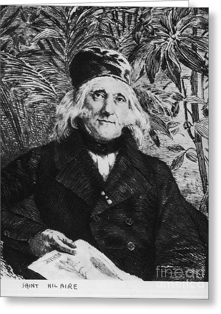 Famous Person Greeting Cards - Augustin Saint-hilaire, French Botanist Greeting Card by Science Source