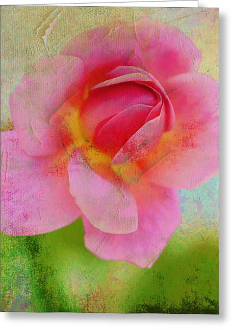 Altered Photograph Greeting Cards - Aunt Loris Pink Rose Greeting Card by Danielle Miller