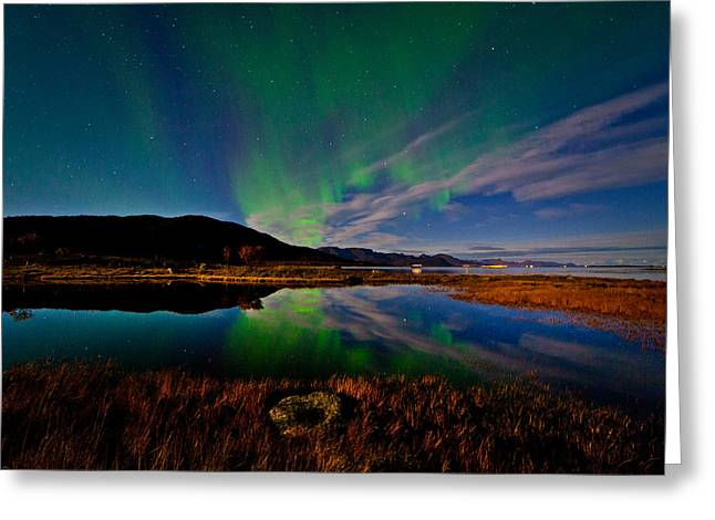 Aurora At The Pond Greeting Card by Frank Olsen
