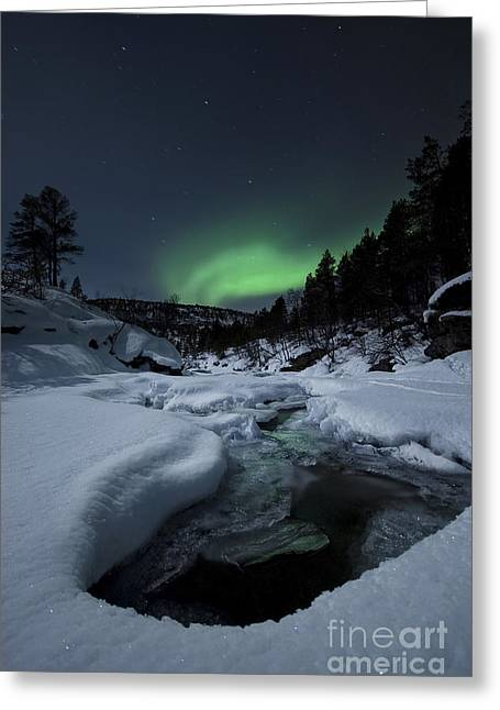 Winter Night Greeting Cards - Aurora Borealis Over Tennevik River Greeting Card by Arild Heitmann