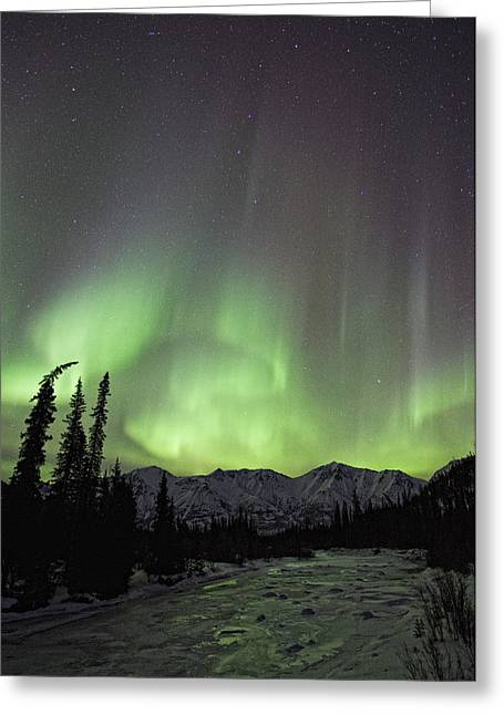 Without Lights Greeting Cards - Aurora Borealis Over The Wheaton River Greeting Card by Robert Postma