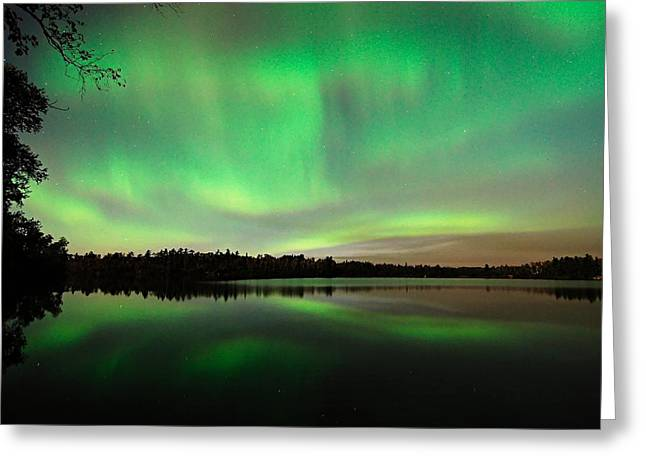 Image Greeting Cards - Aurora over Tofte Lake Greeting Card by Larry Ricker