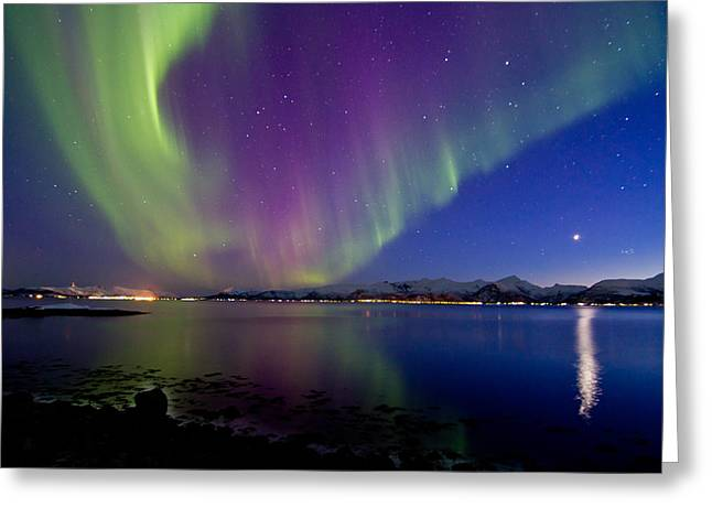 Photographing Aurora Greeting Cards - Auroras with Venus and Pleiades Greeting Card by Frank Olsen