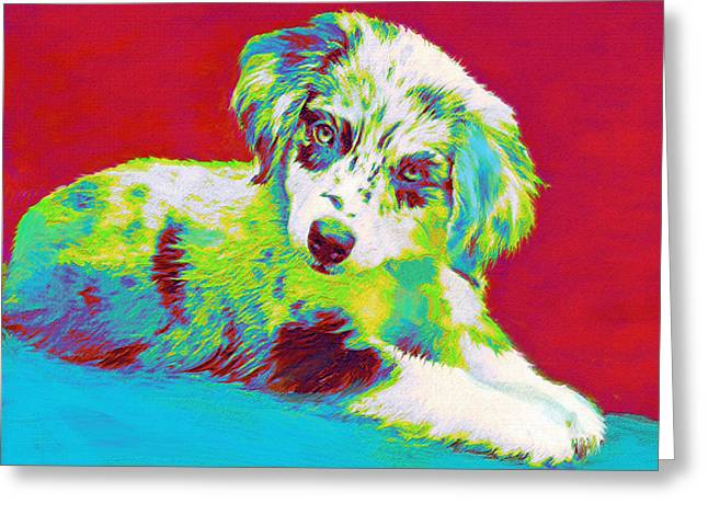 Pup Digital Art Greeting Cards - Aussie Puppy Greeting Card by Jane Schnetlage