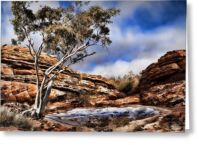 Australia Landscape 5 Greeting Card by Wendy White