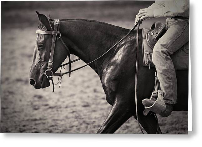 Horse Portrait Photographs Posters Greeting Cards - Australian Cowboy Greeting Card by Michelle Wrighton