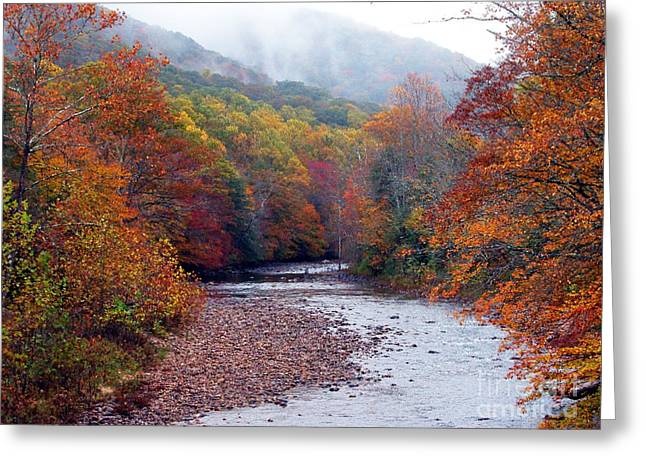 Rushing Water Greeting Cards - Autumn along Williams River Greeting Card by Thomas R Fletcher