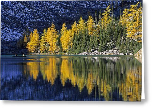 Reflexions Greeting Cards - Autumn, Alpine Larch Trees, Lake Agnes Greeting Card by John Sylvester