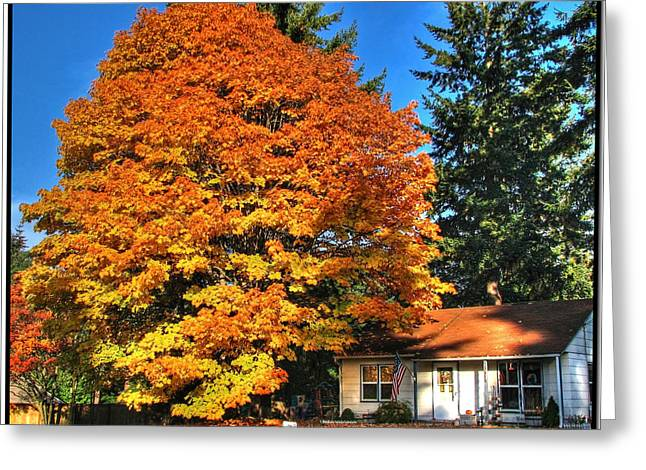 3 Exposure Greeting Cards - Autumn Americana Greeting Card by Chris Anderson