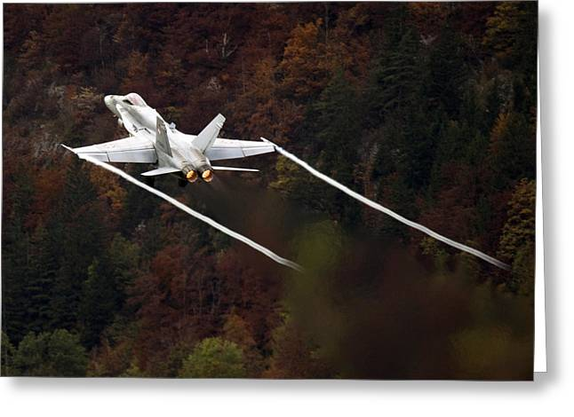F-18 Greeting Cards - Autumn Greeting Card by Angel  Tarantella