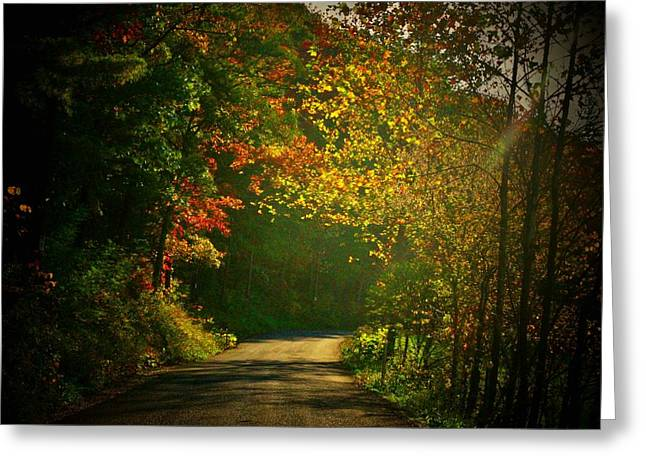 Northern Virginia Greeting Cards - Autumn Arch Greeting Card by Joyce Kimble Smith
