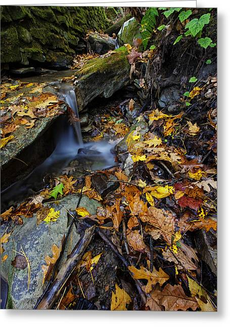 """sunset Photographs"" Greeting Cards - Autumn at a Mountain Stream Greeting Card by Rick Berk"