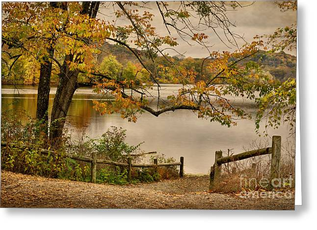 Autumn At Radnor Lake Greeting Card by Cheryl Davis