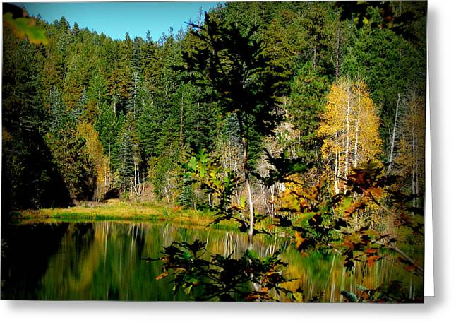 Prescott Greeting Cards - Autumn at the Lake Greeting Card by Aaron Burrows