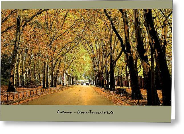 Postkarte Greeting Cards - Autumn Avenue Greeting Card by Liona Toussaint
