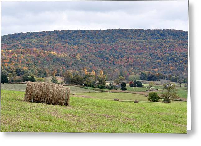 Tennessee Farm Greeting Cards - Autumn Bales Greeting Card by Jan Amiss Photography