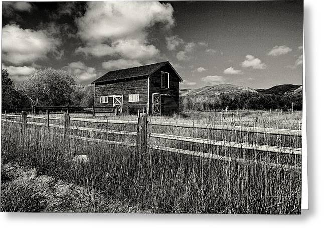Hayloft Greeting Cards - Autumn Barn Black and White Greeting Card by Joshua House