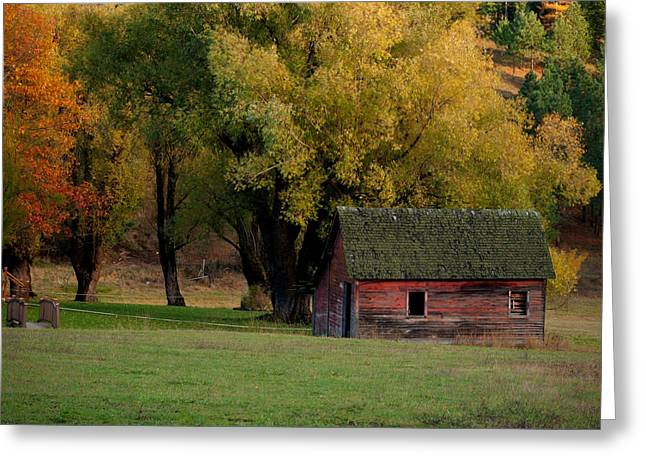Outbuildings Greeting Cards - Autumn Barn Greeting Card by Idaho Scenic Images Linda Lantzy
