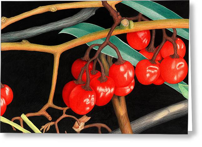 Crimson Drawings Greeting Cards - Autumn Berries Greeting Card by Norm Holmberg