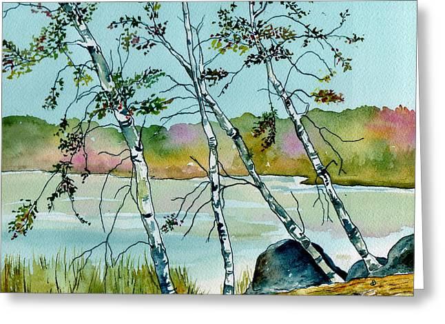 Autumn Birches Greeting Card by Brenda Owen