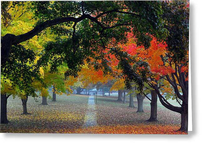 Leafy Greeting Cards - Autumn Canopy Greeting Card by Lisa  Phillips