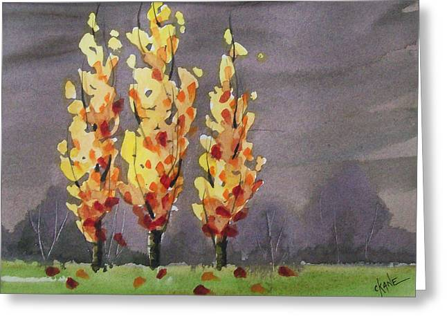 Trees In Autumn Greeting Cards - Autumn Cold Rain Greeting Card by Christine Camp