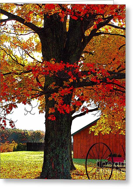 Barn Dance Greeting Cards - Autumn Color Dance Greeting Card by Diane E Berry