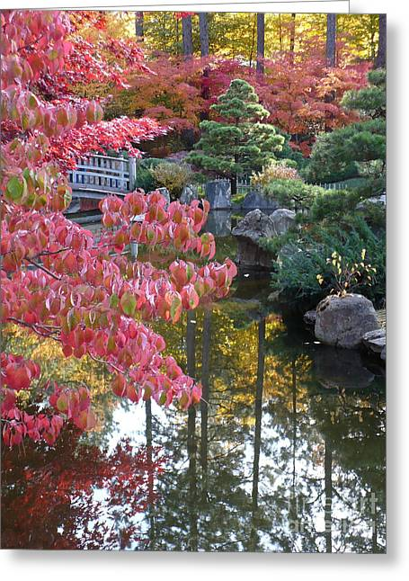 Spokane Greeting Cards - Autumn Color Reflection Greeting Card by Carol Groenen