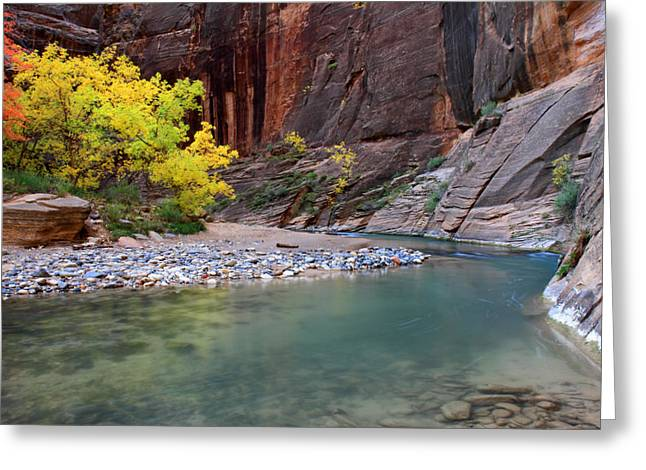 Narrow Canyons Greeting Cards - Autumn colors in the Virgin Narrows in Zion Greeting Card by Pierre Leclerc Photography