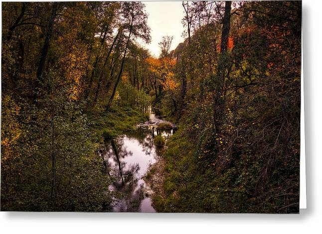 Oak Creek Greeting Cards - Autumn Creek  Greeting Card by Saija  Lehtonen