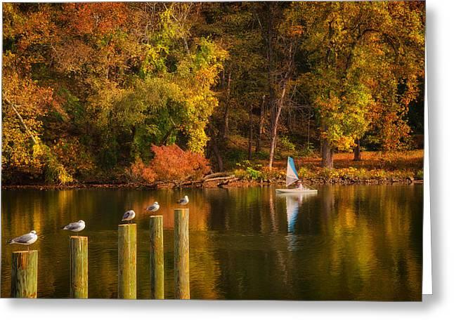 Autumn Day Greeting Card by Boyd Alexander
