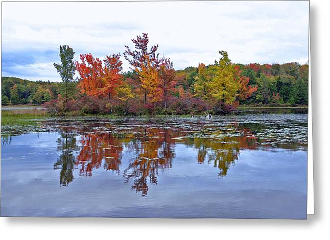 Leaf Peepers Greeting Cards - Autumn Diversity Greeting Card by David Rucker