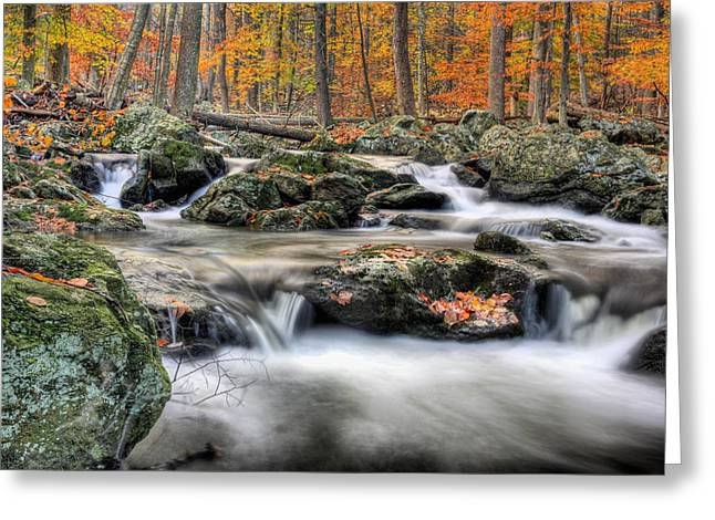 Hunting Camp Greeting Cards - Autumn Dreams Greeting Card by JC Findley